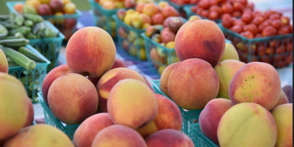 Where to shop Alabama farmers markets this summer