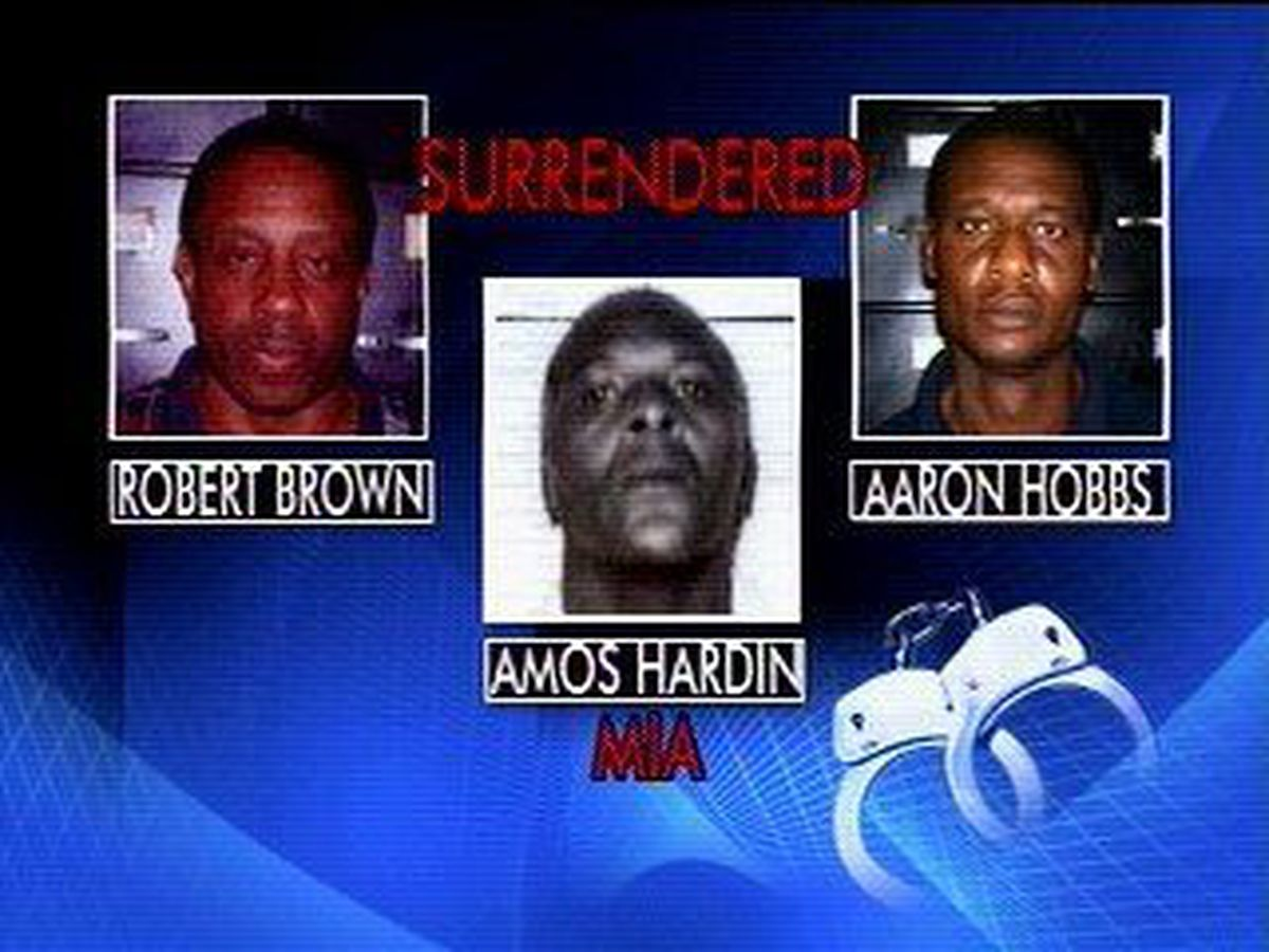Handful of suspects surrender after seeing themselves on tv