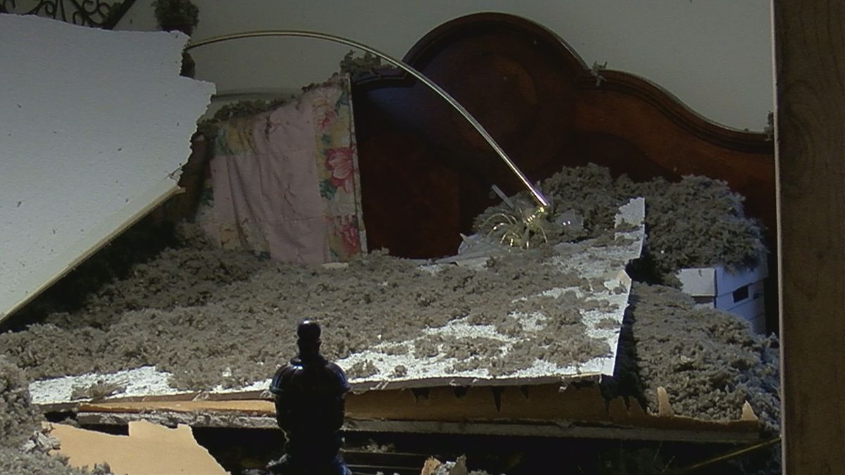 Woman's ceiling collapses; insurance won't foot the bill
