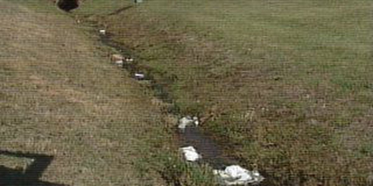 Remarkable Dirty Ditch Causing Health Problems For Home Owners Home Interior And Landscaping Spoatsignezvosmurscom