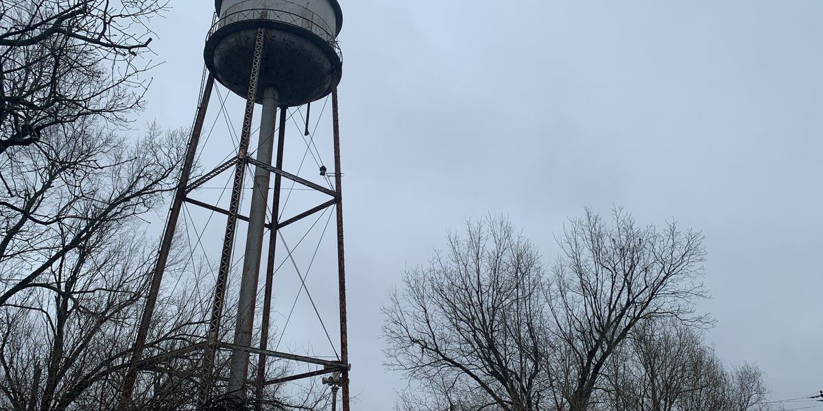 Gov. Ivey announces grant to help refurbish Pisgah water tank
