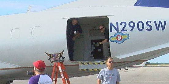 Shelter dogs flown from AL to NJ to clear up space for hurricane rescues