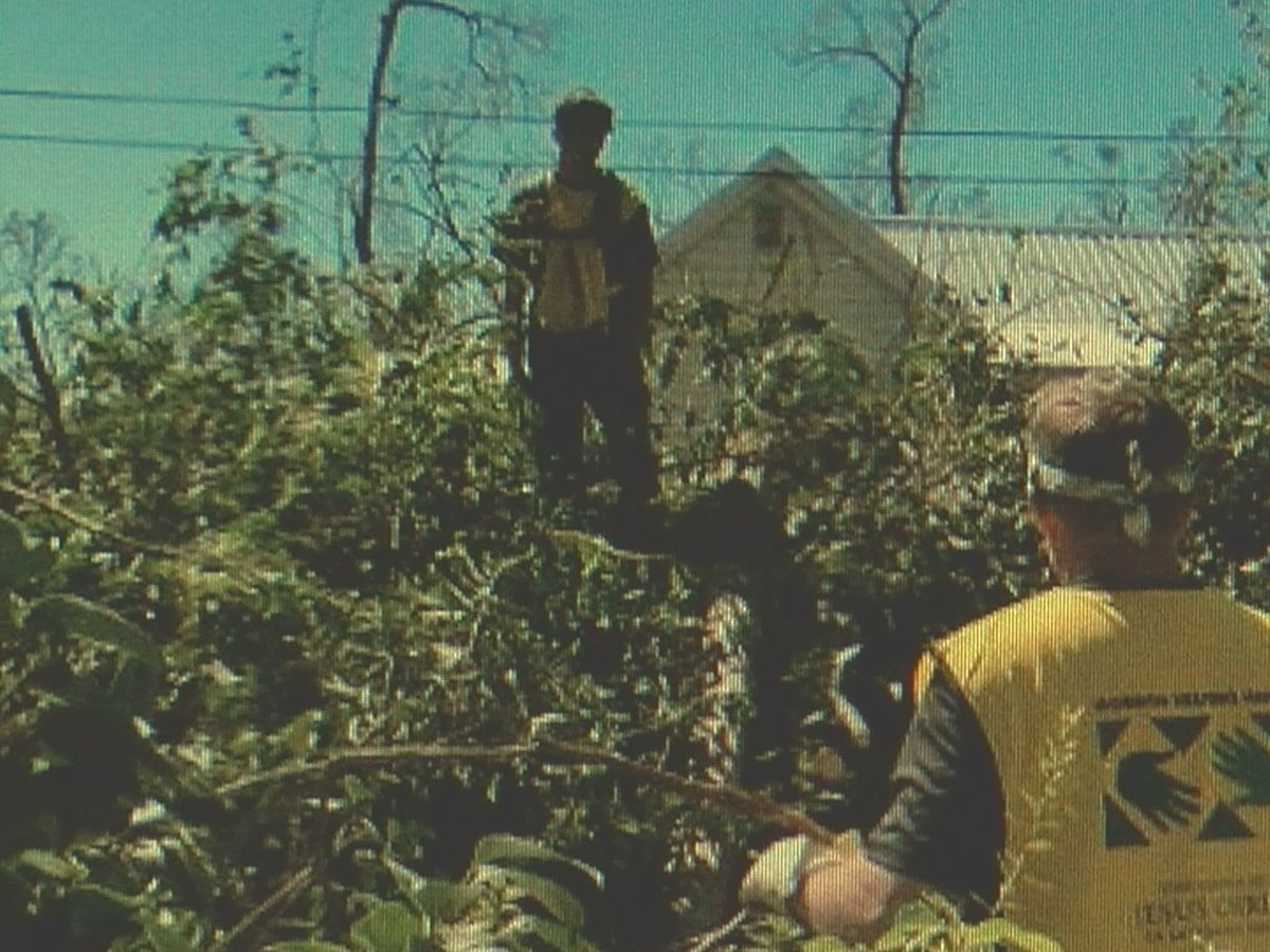 Hurricane Michael volunteers