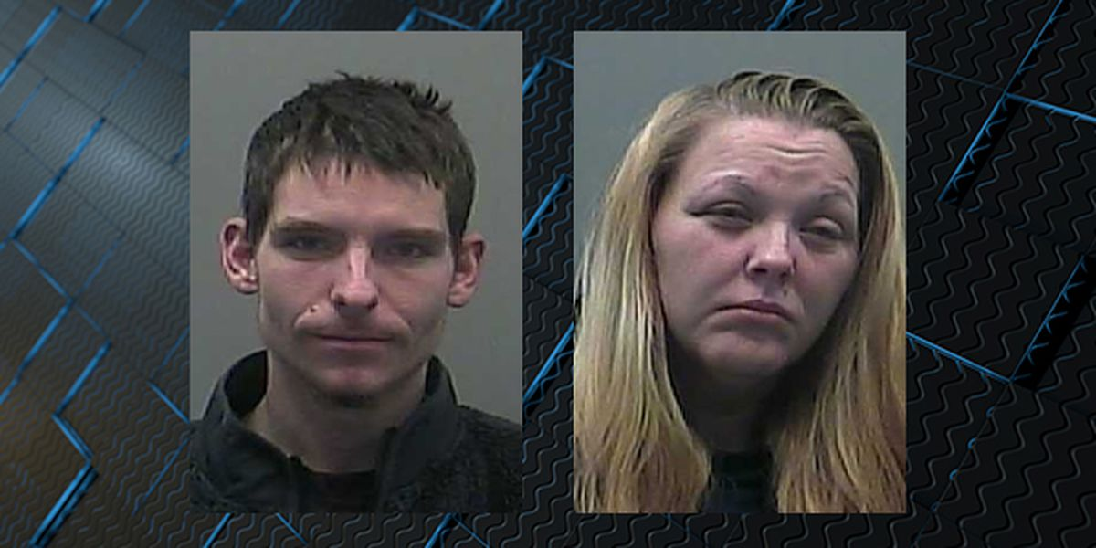 2 sought after 'joy ride' in stolen car destroys crops in Limestone County