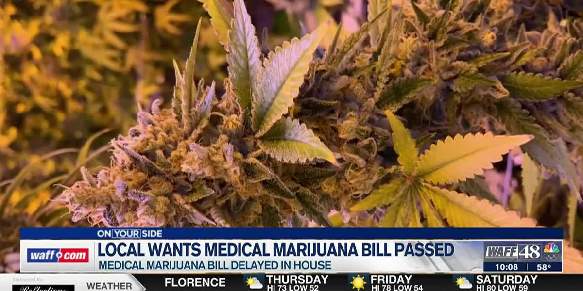 While lawmakers debate a state medical marijuana bill, some Alabamians say they want it passed