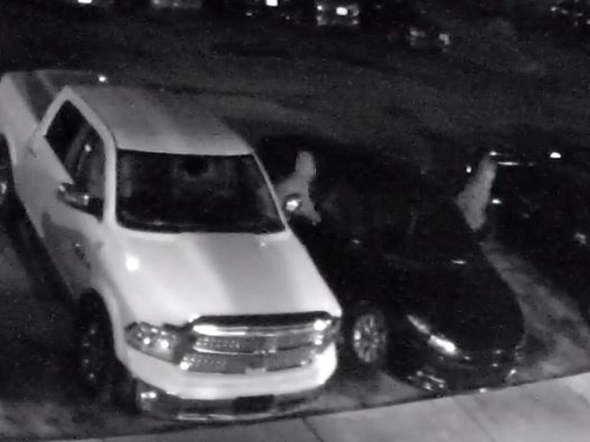 Decatur police investigating multiple reported thefts at apartment complex