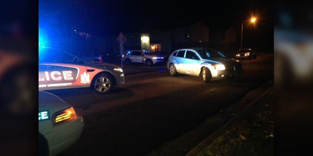 Juveniles in custody after leading police on chase in stolen car
