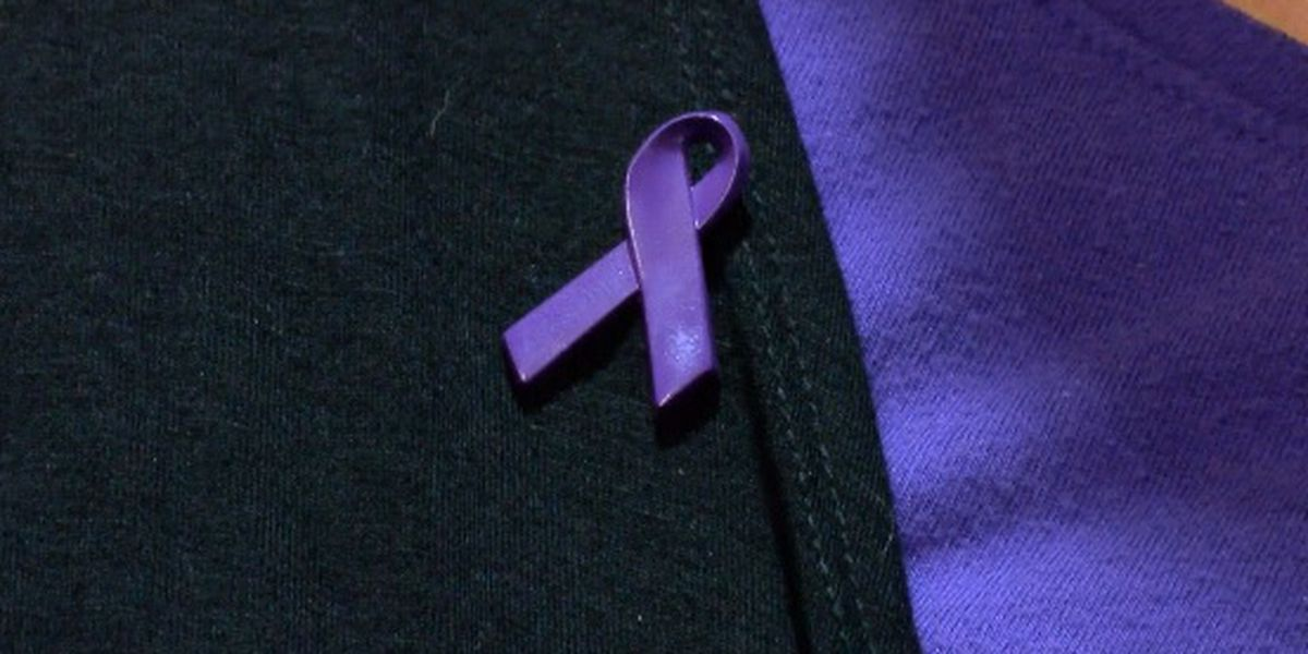 HPD, Crisis Services touch on resources during Domestic Violence Awareness Month