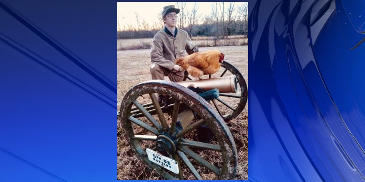 Pet rooster reunited with owner after disappearing from Cracker Barrel parking lot in Cullman