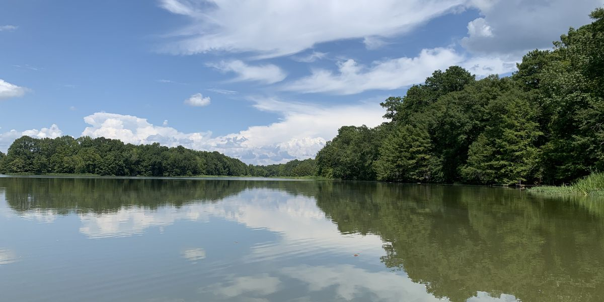 Alabama State Parks report increase in visitors in 2020