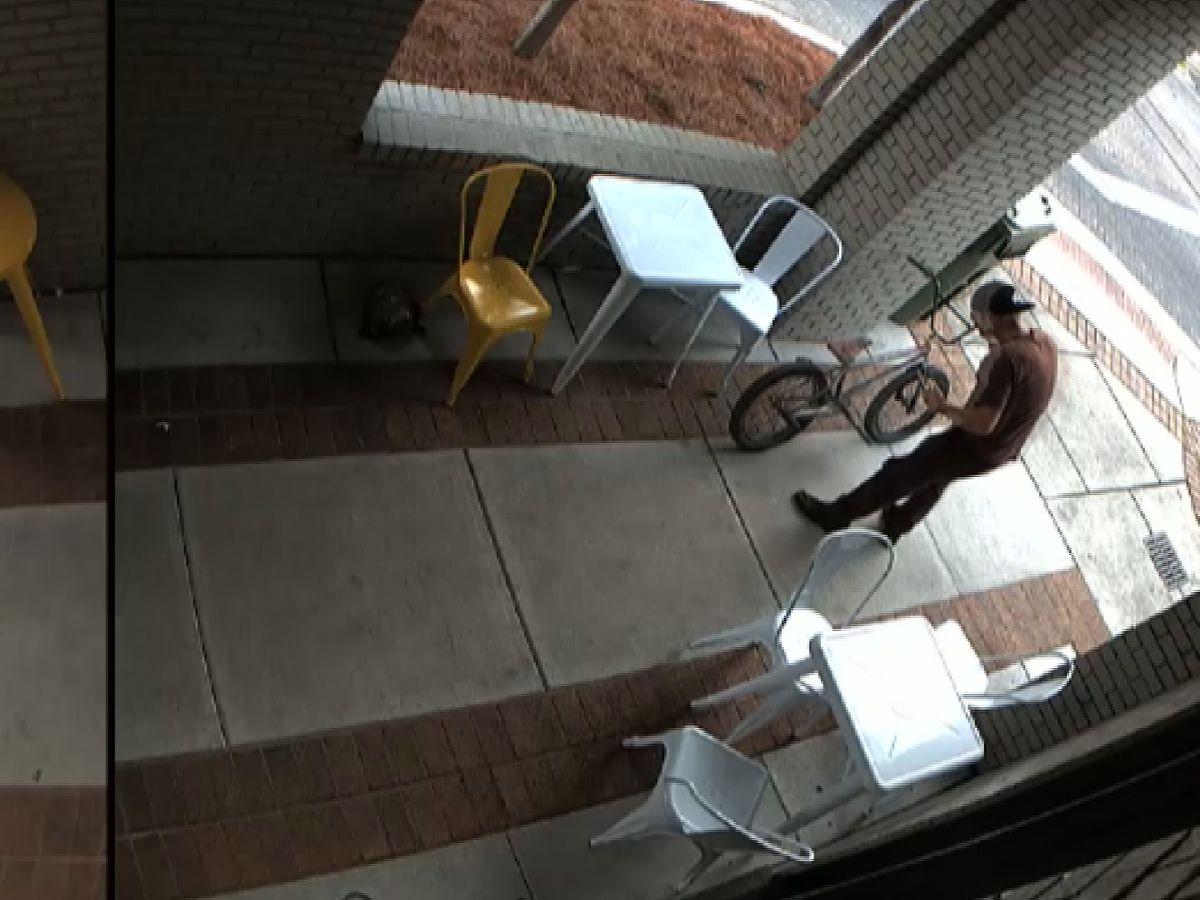 Crime Stoppers: BMX bike stolen outside Huntsville coffee shop