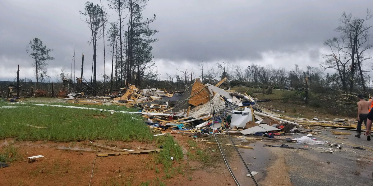 Woman who lost multiple family members to Beauregard, AL tornado shares survival story
