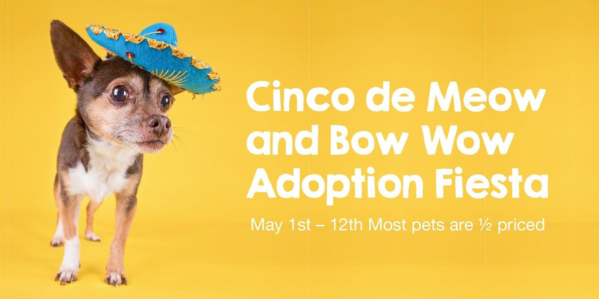 "Huntsville Animal Services holding ""Cinco De Meow and Bow Wow"""