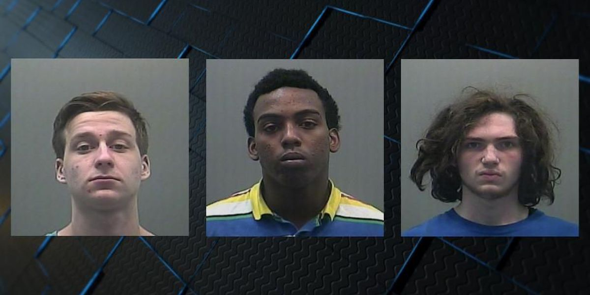 4 arrested in connection to a string of vehicle thefts