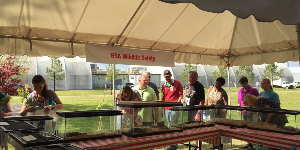 """Marshall Space Flight Center holds """"SHE Day"""" to promote health, safety awareness"""