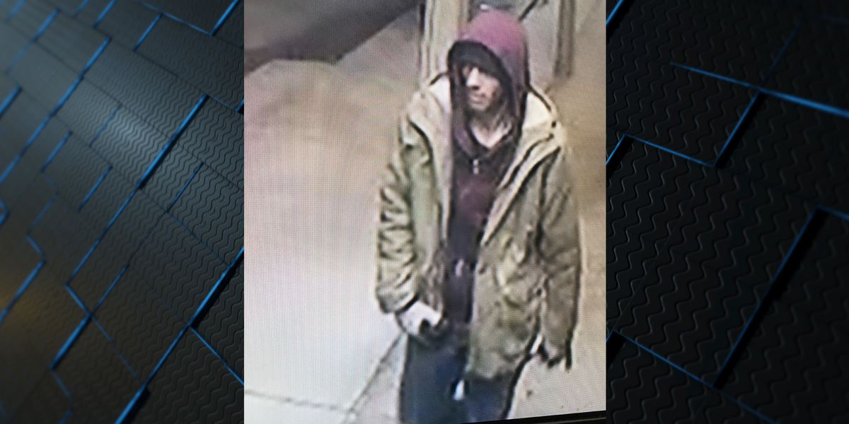 Guntersville police need help identifying suspect in restaurant burglary