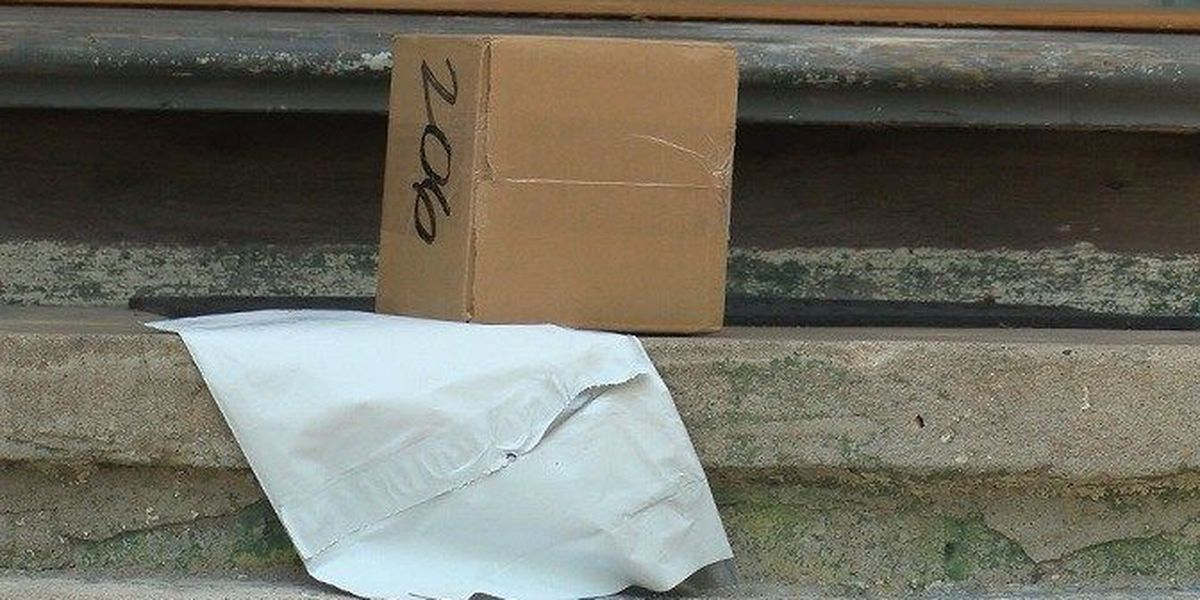 Protect yourself from 'porch pirates' this holiday season