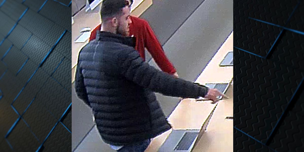 Crime Stoppers: Credit card thief spends over $4K at Apple Store