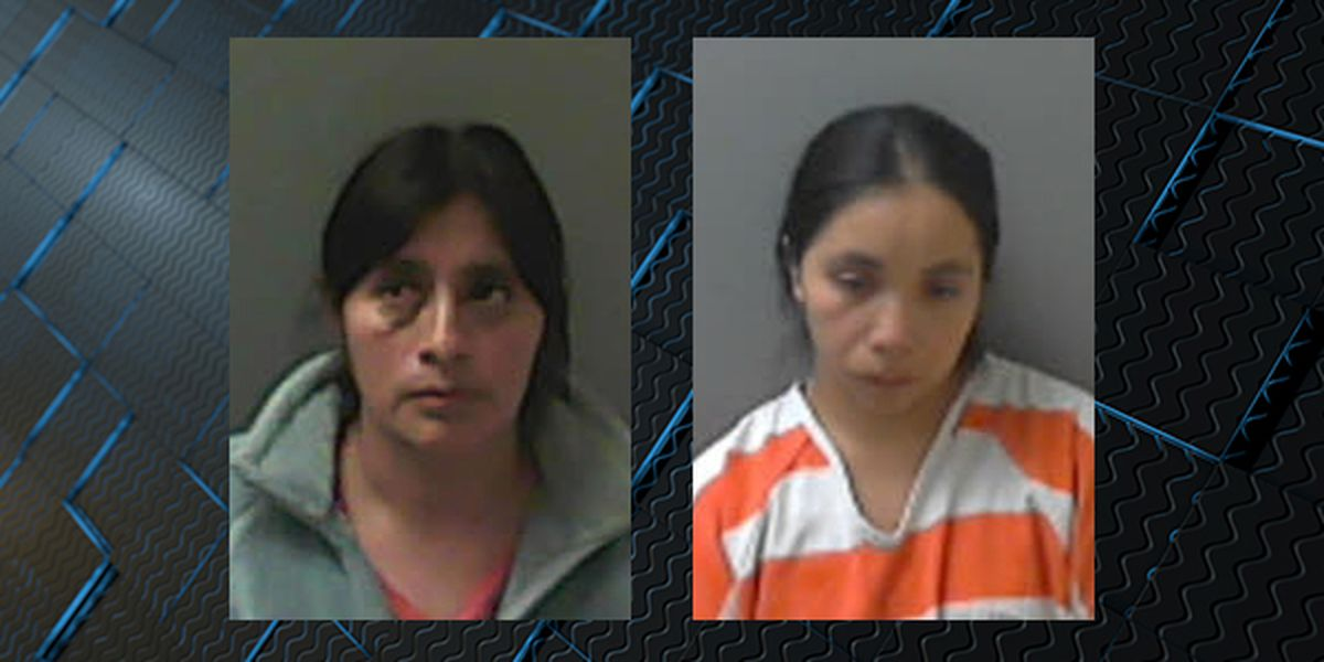 2 charged with operating illegal day care in Russellville