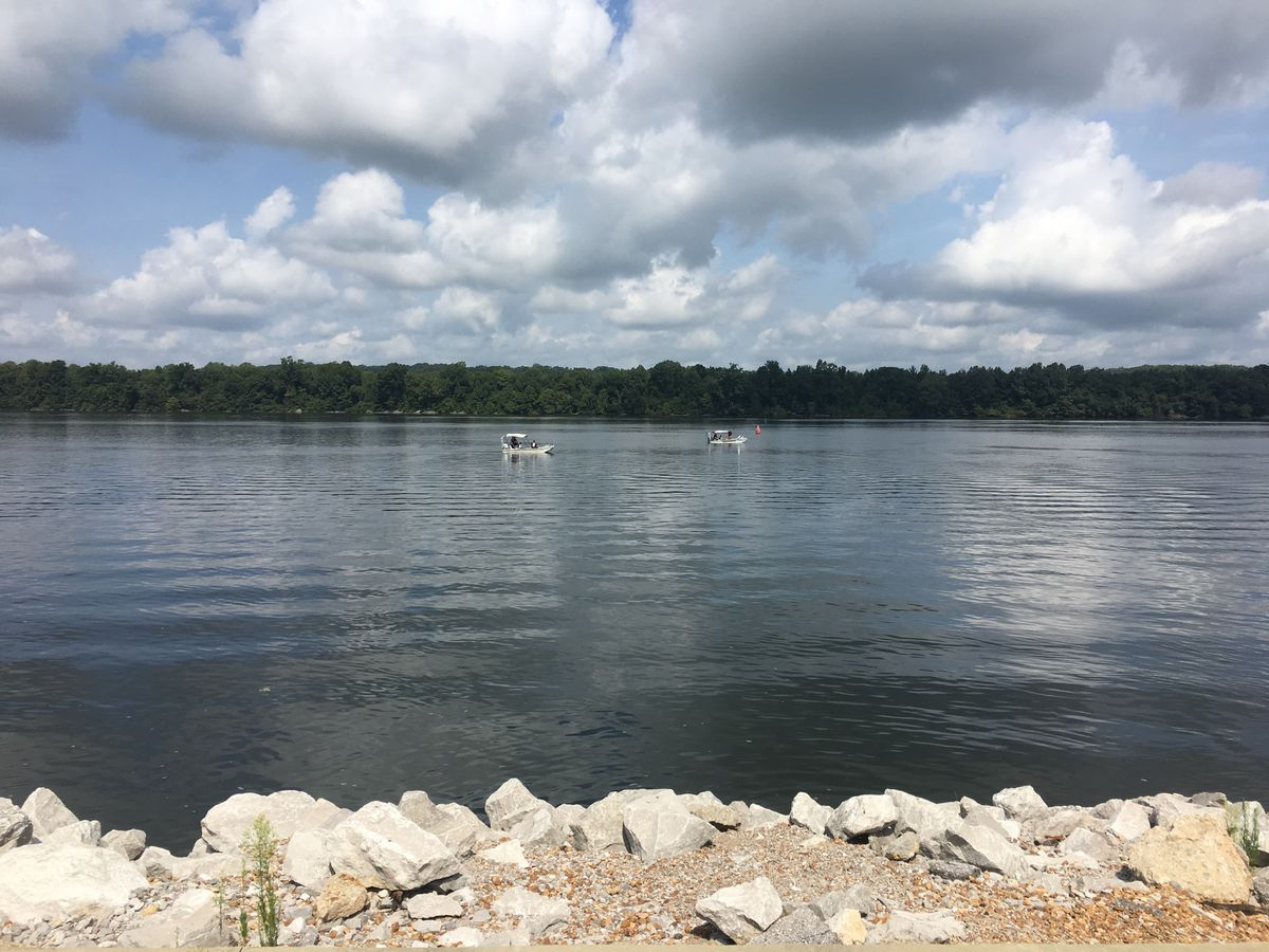 Search underway for missing person in Tennessee River in Sheffield