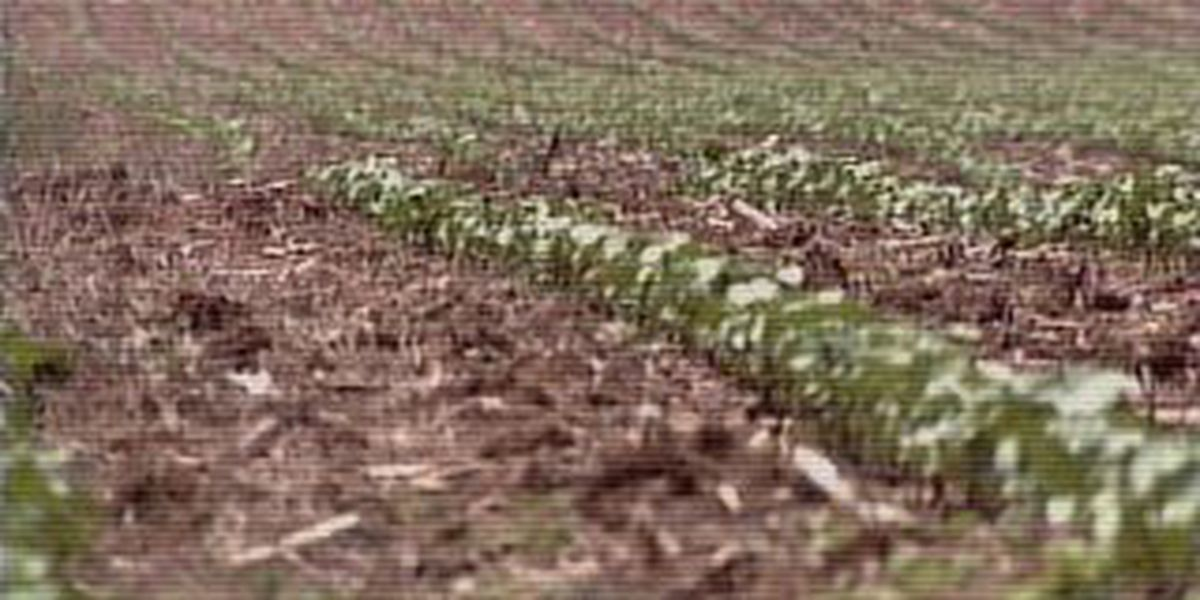 New report shows drought getting worse