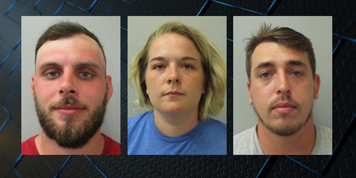 3 suspects charged in Flint River brawl