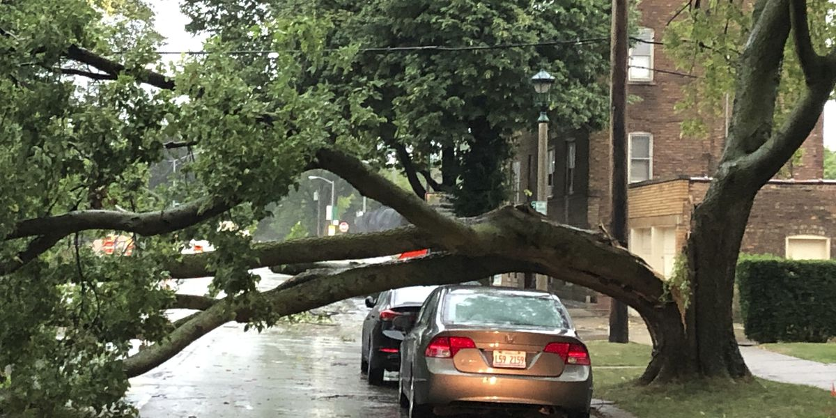 1 dead after powerful storm leaves devastation in Midwest