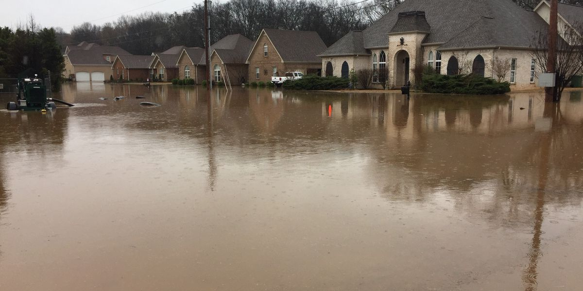 Insurance agents advises homeowners to look at their policies to make sure they are covered