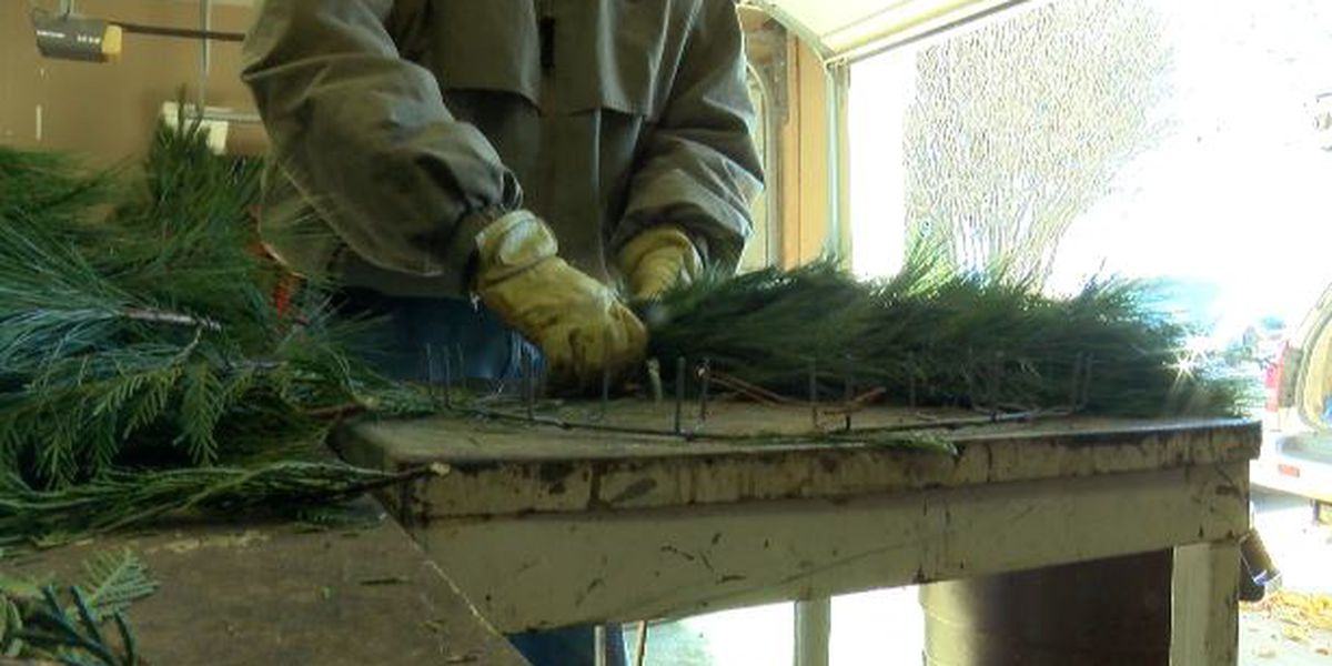 Christmas tree farmer on how to pick the perfect tree