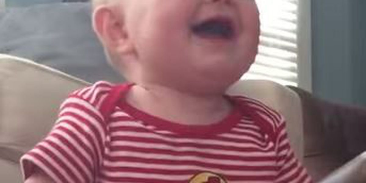 VIDEO: Baby laughs hysterically at ripping pages