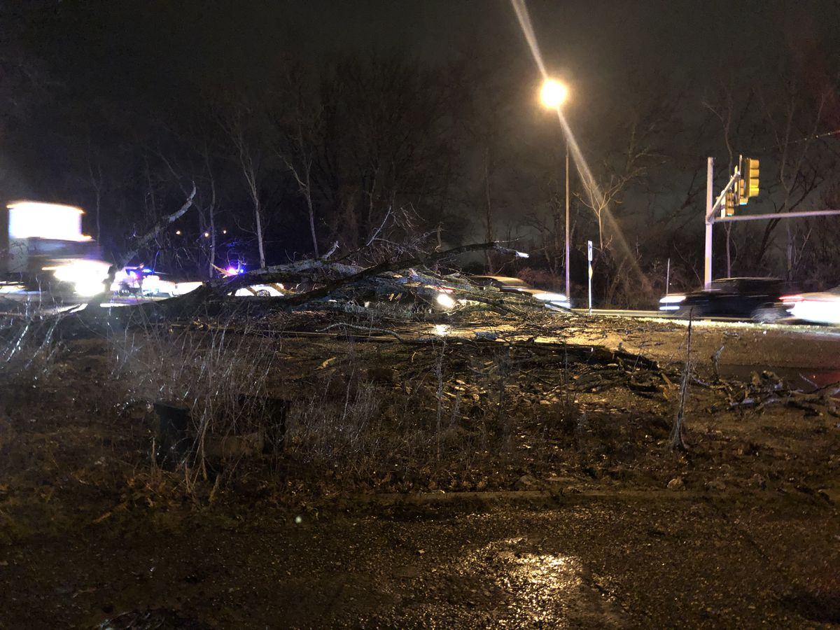 Governors Drive intersection reopens after tree falls on car
