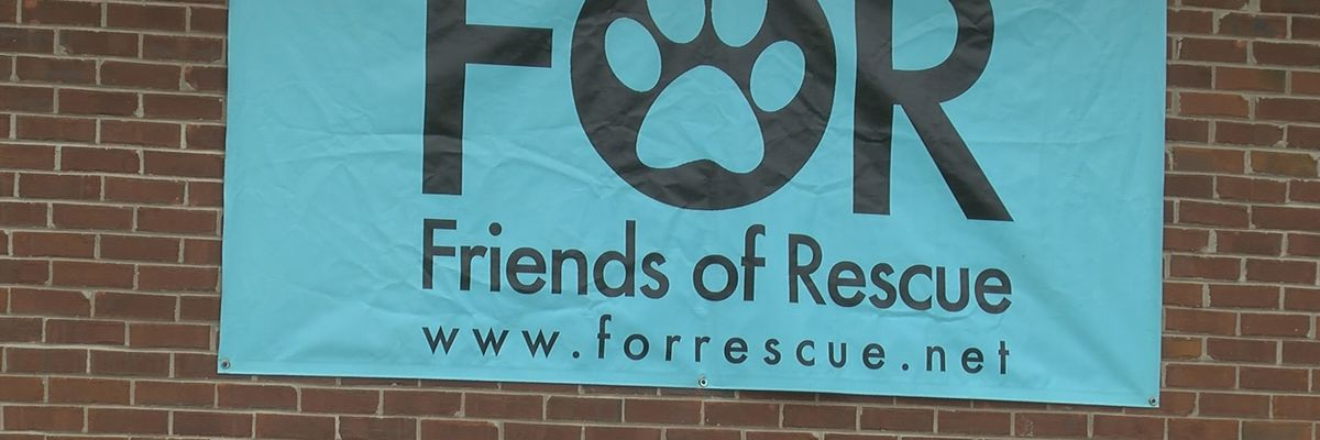 Huntsville animal rescue group opens thrift store