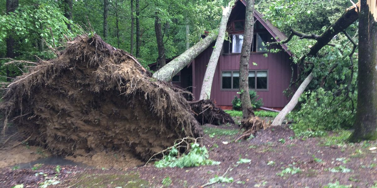 NWS confirms EF0 tornado hit near AL/TN state line