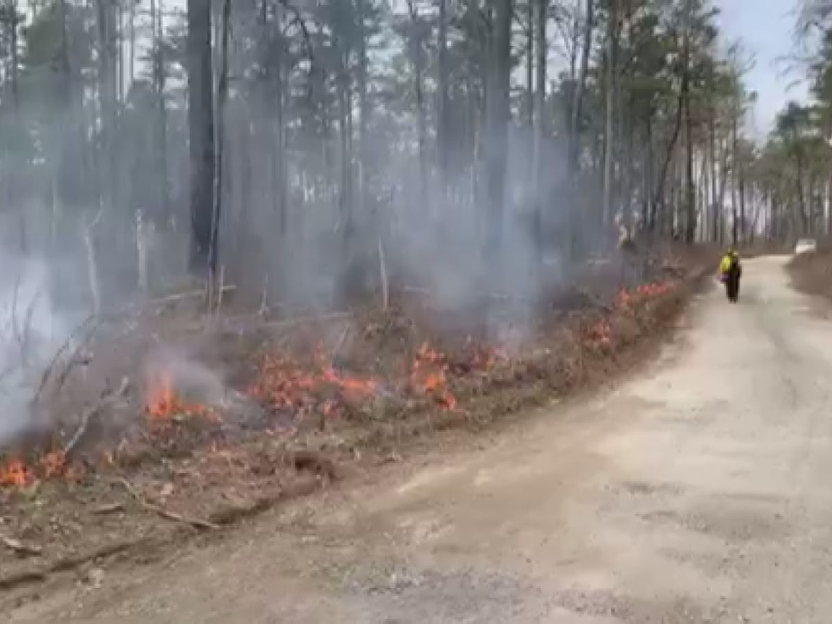 Moores Mill Volunteer Fire Department and Little River Canyon National Preserve officials conduct prescribed burns