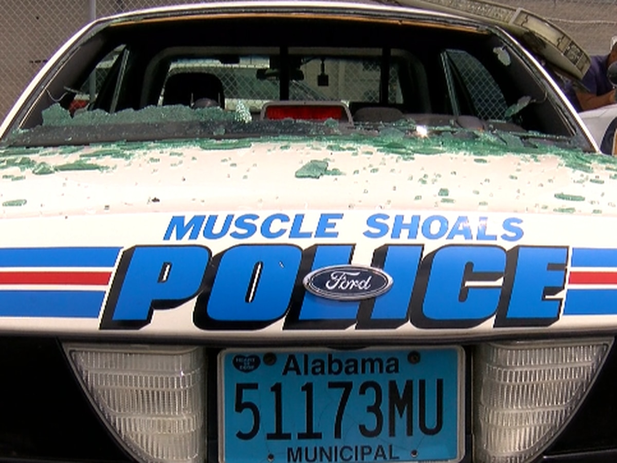Utility pole damages several Muscle Shoals police cars