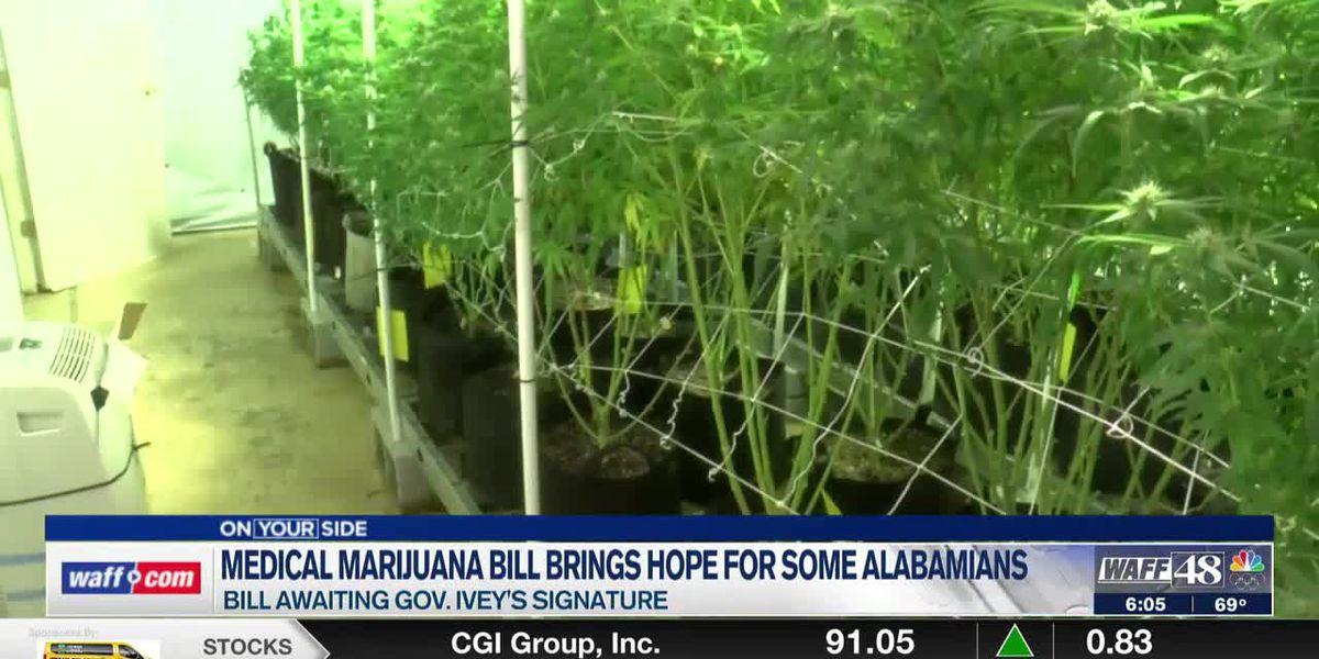 Medical marijuana bill offers hope for some Alabamians