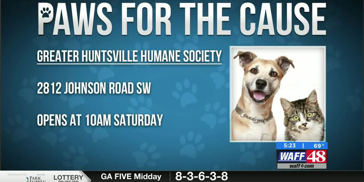 This week's Paws for the Cause