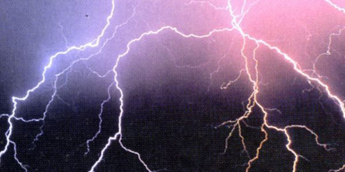 Two homes hit by lightning during early morning storms