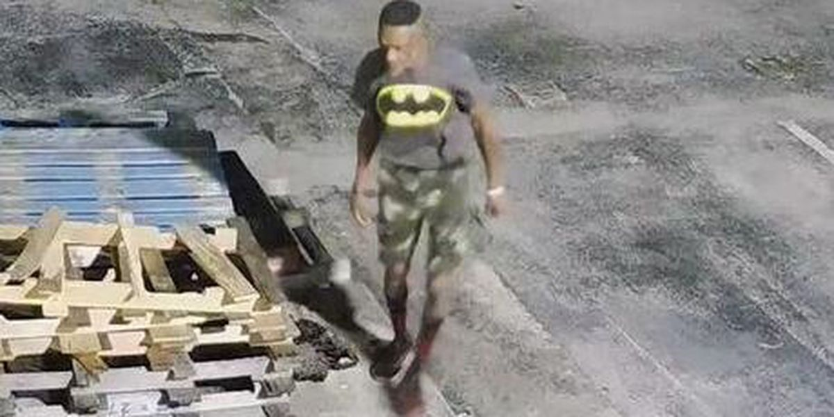 Huntsville police looking for suspected car burglar in Batman shirt