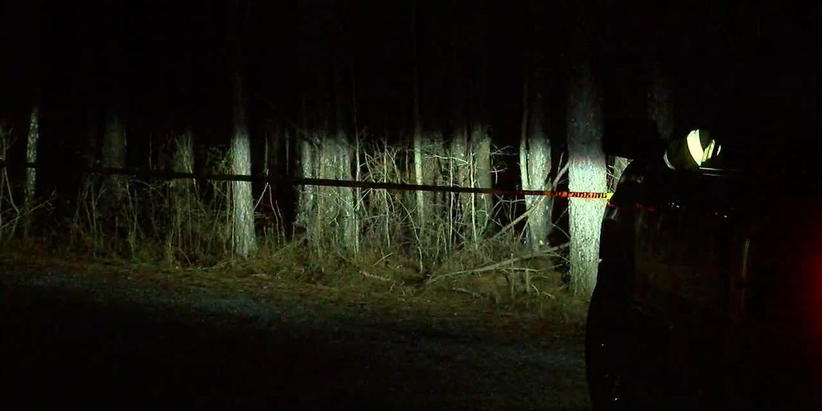 UPDATE: 2nd person dies after Saturday's plane crash in Cullman Co.