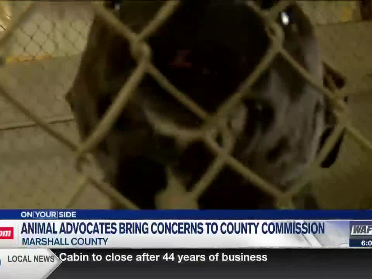 Concerned citizens speak out about their concerns for Marshall County Animal Shelter