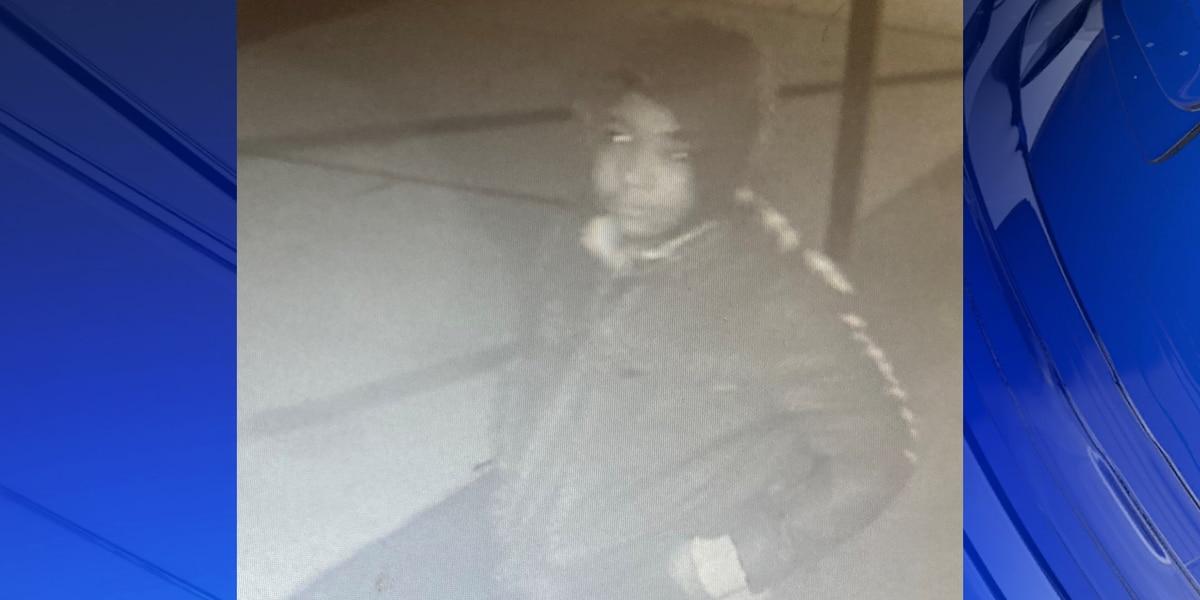 Deputies looking for Limestone robbery suspect