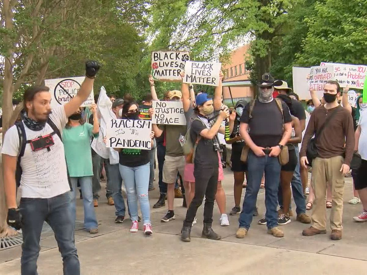 Hundreds peacefully protest in downtown Huntsville