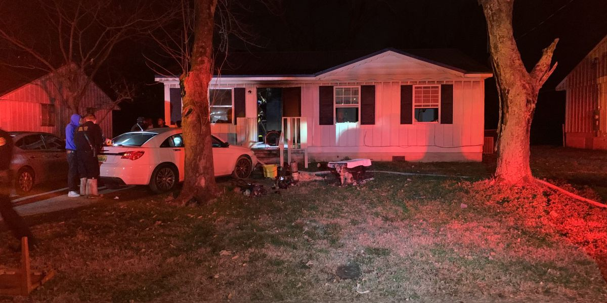 Huntsville home catches fire; two dogs injured in blaze
