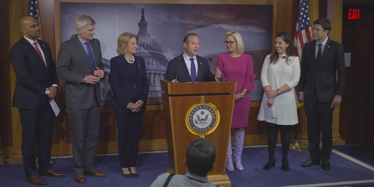 Lawmakers introduce bill they hope will help new parents