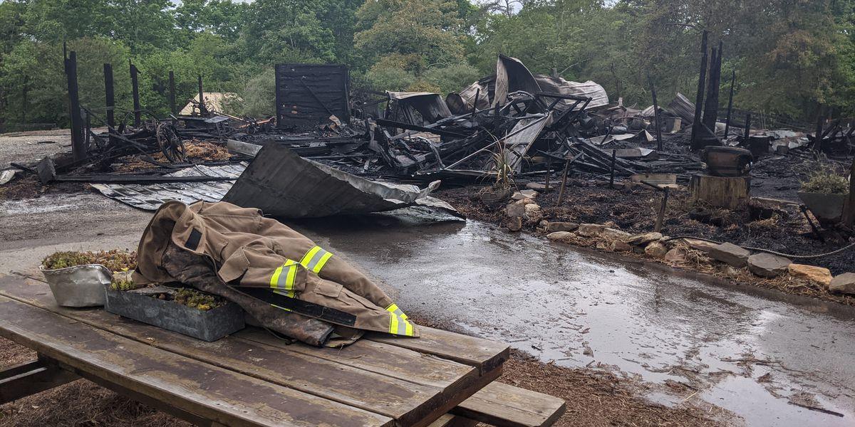 Fire at petting zoo at Noccalula Falls Park, dozens of animals killed