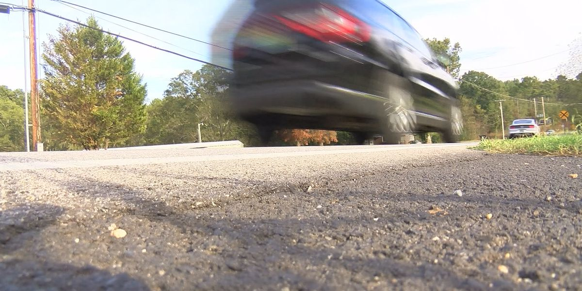 Homeowners worried speeders may cause another fatal crash on Hobbs Island Road