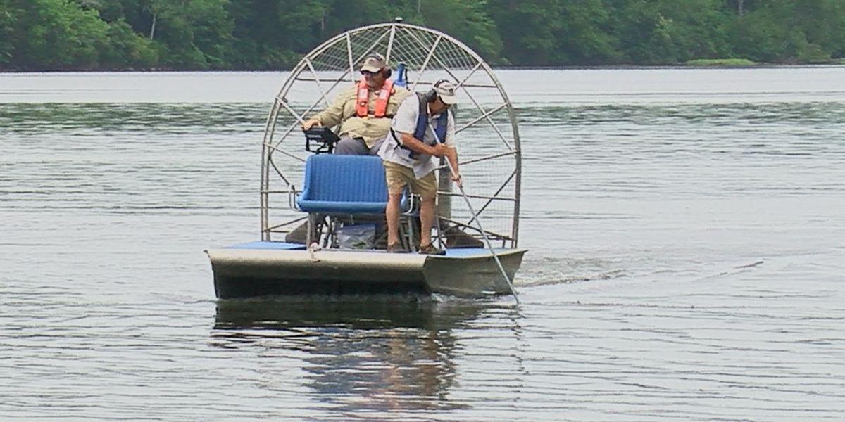 TVA employees weeding and managing aquatic plants at Lake Guntersville