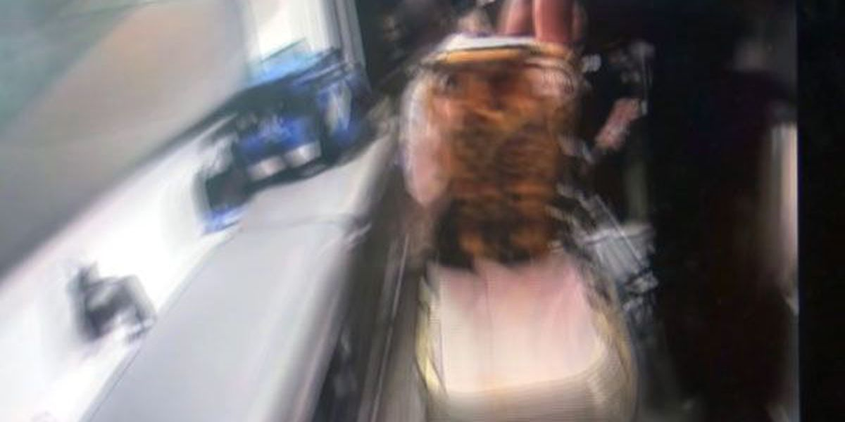 Body camera captures effects of dangerous batch of spice
